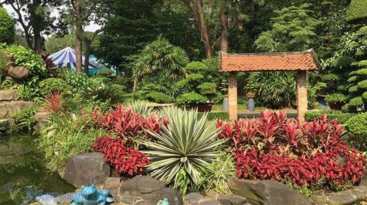 胡志明市的热带植物和几何玻璃墙屏风房屋和餐厅