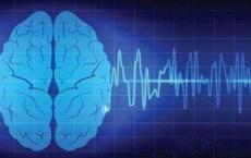 研究人员首次将脑信号直接翻译成语音