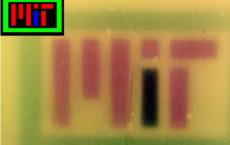 麻省理工学院的研究人员设计出了具有多色视觉功能的细菌
